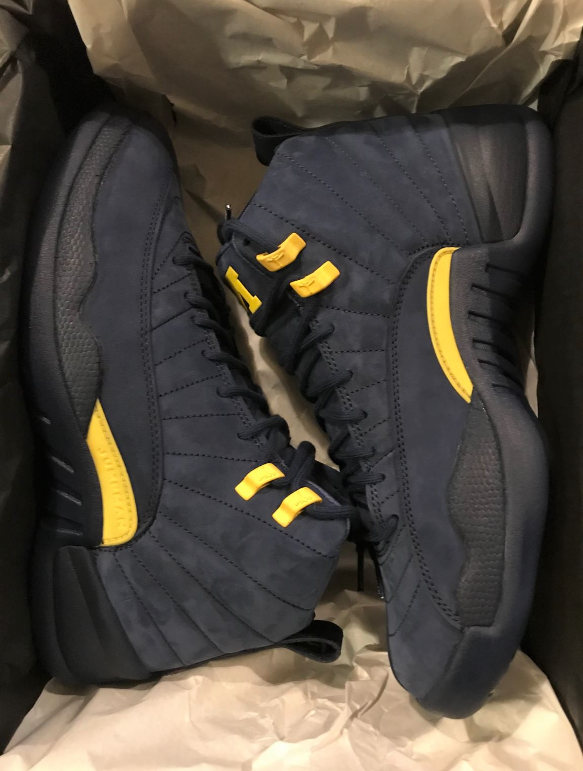 jordan 12 retro michigan 2