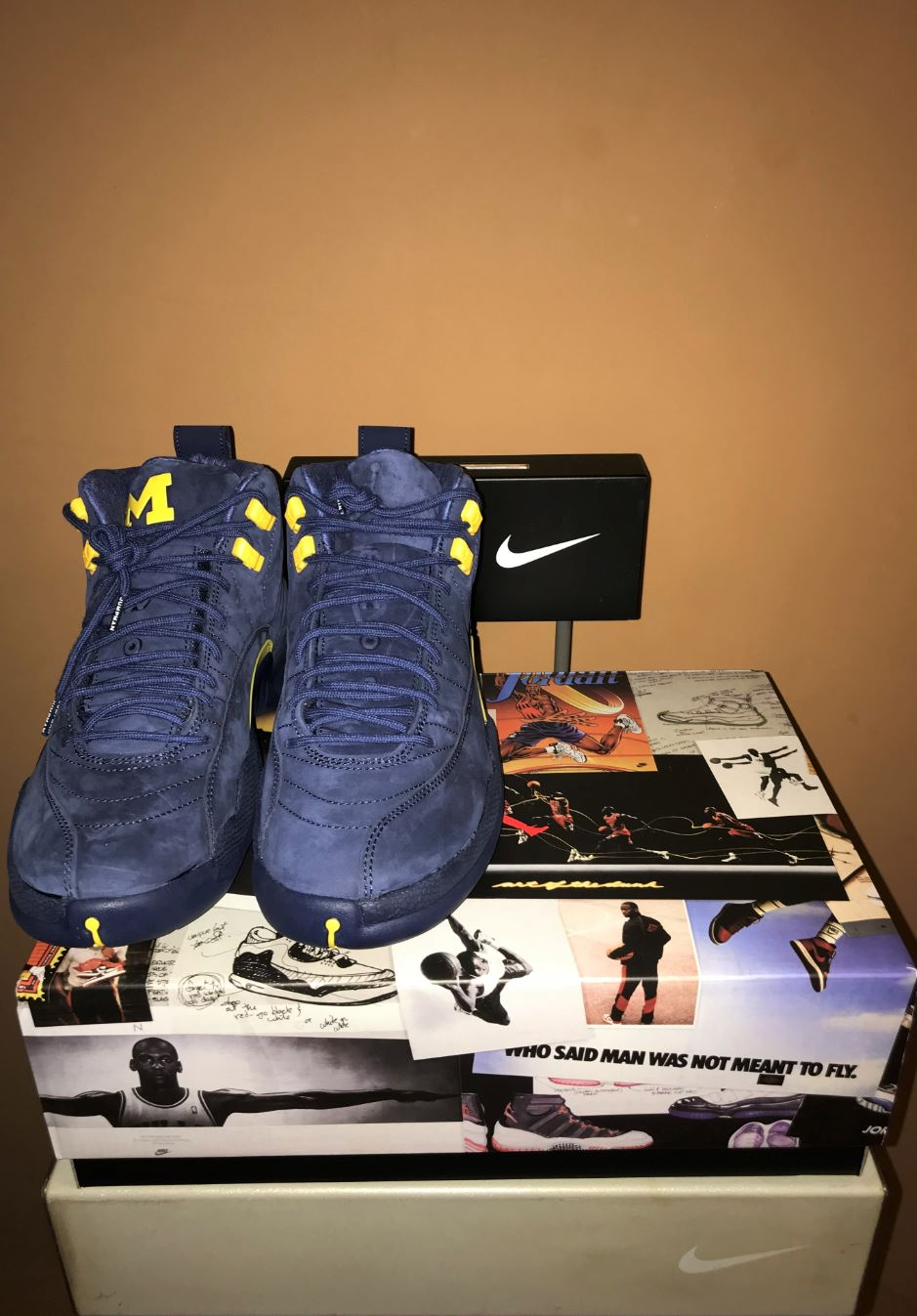 jordan 12 retro michigan 6