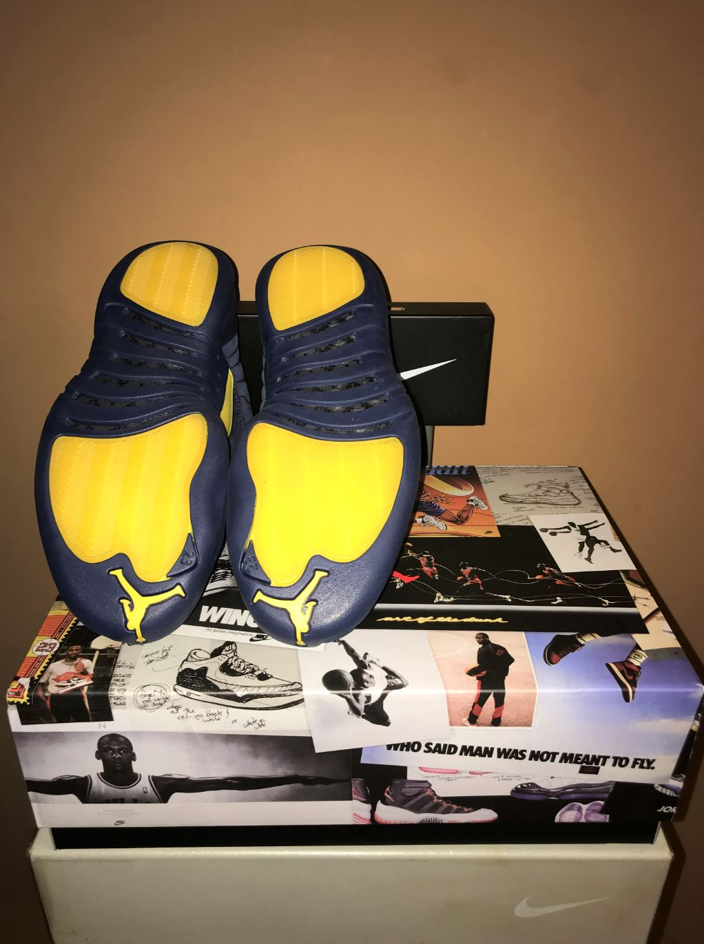 jordan 12 retro michigan 7